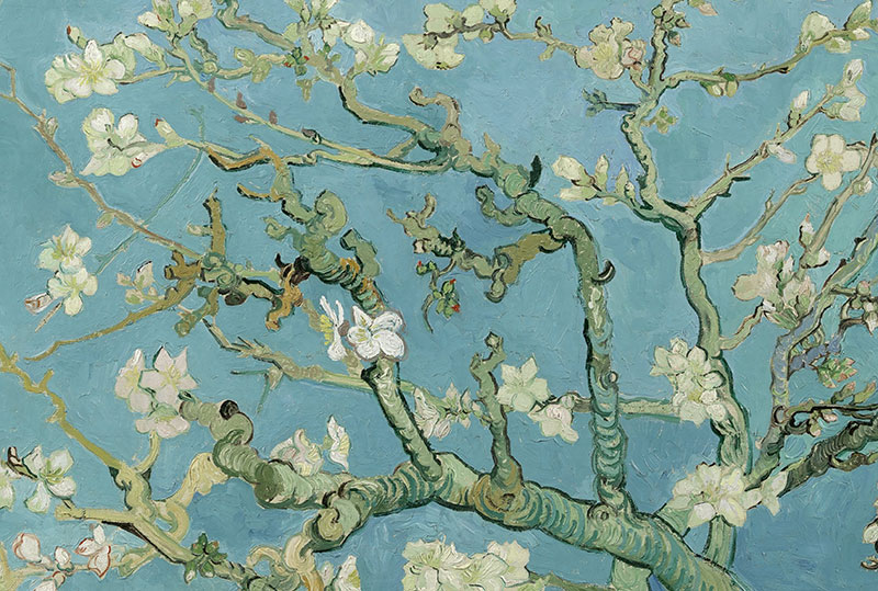 Kirschblüten Van Gogh