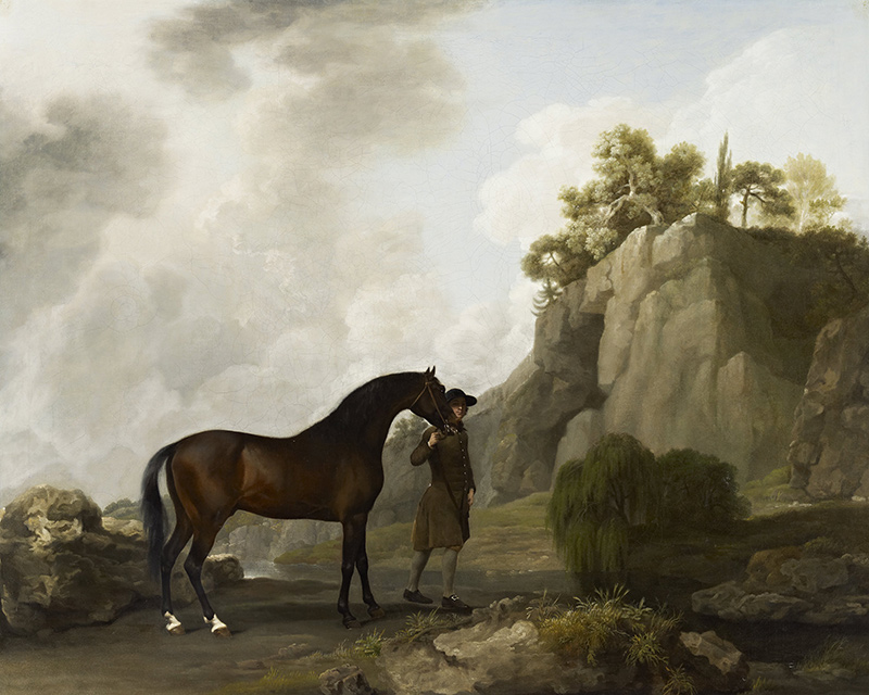 The Marquess of Rockinghams Arabian Stallion George Stubbs Pferde B ...