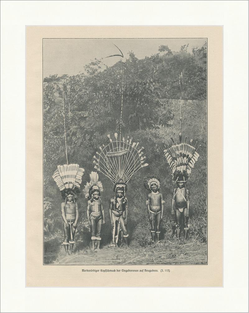 Merkwürdiger Kopfschmuck der Eingeborenen auf Neuguinea Federn Druck ...