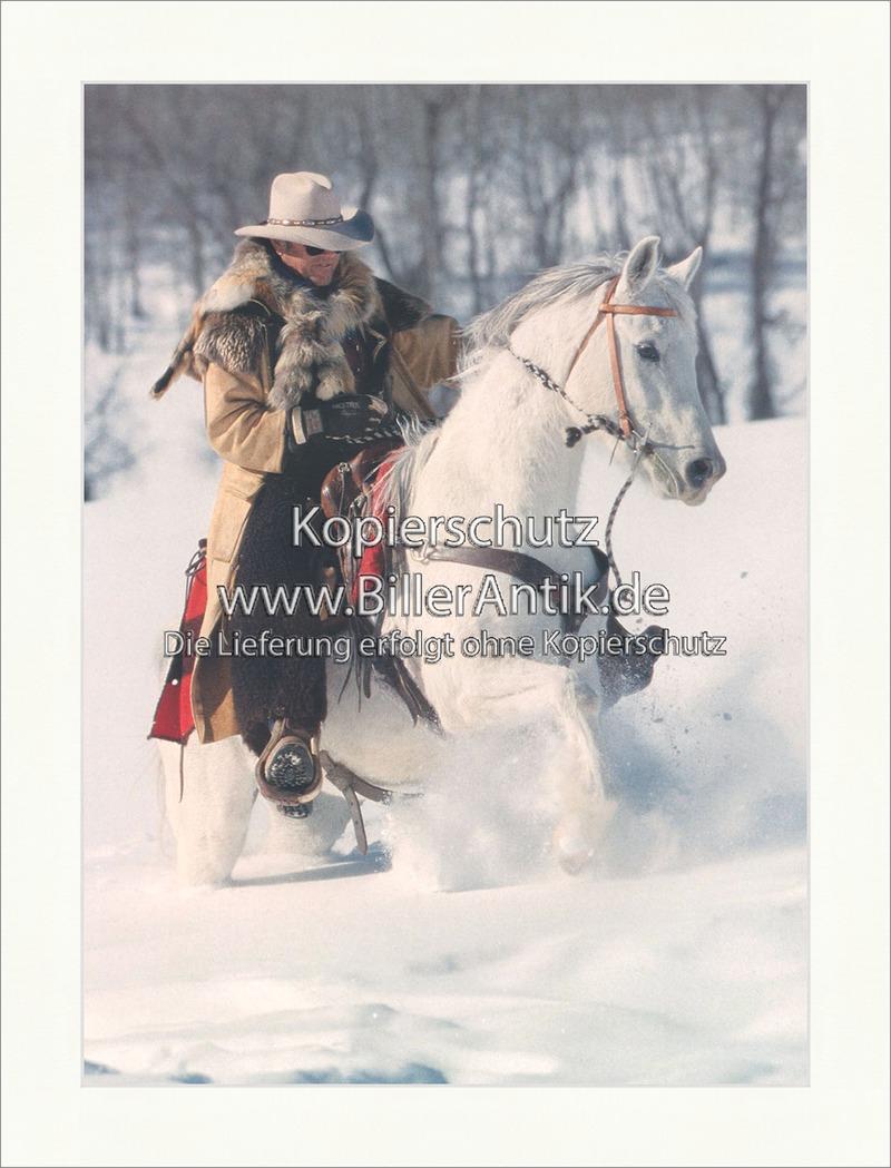 Cowboy Araberpferd Schimmel Colorado Schnee Reiter Westernreiten ...